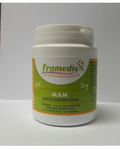 MSM gélules